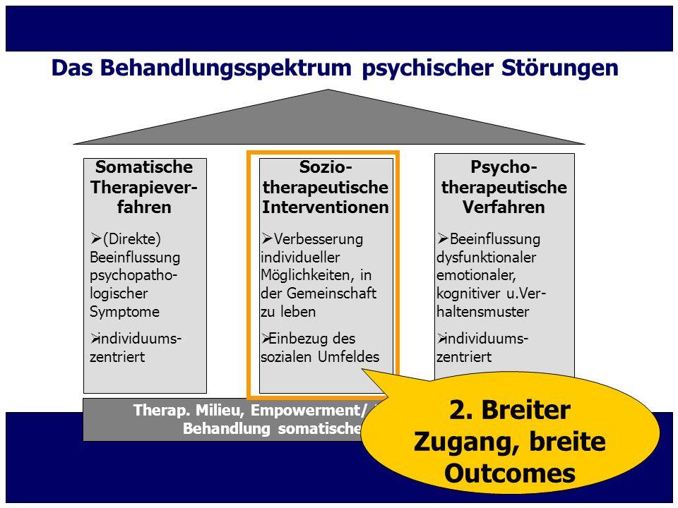 Das Behandlungsspektrum psychischer Störungen