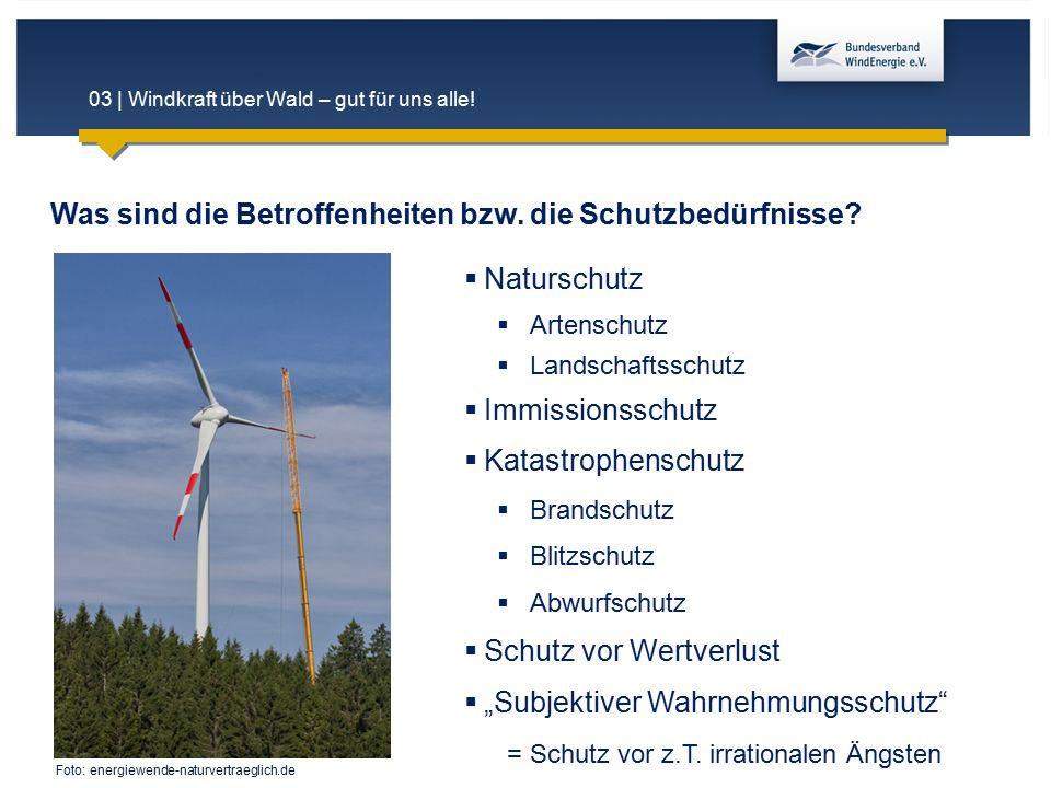 03 | Windkraft über Wald – gut für uns alle!