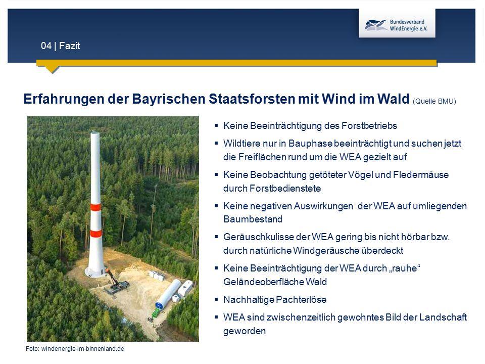 Erfahrungen der Bayrischen Staatsforsten mit Wind im Wald (Quelle BMU)
