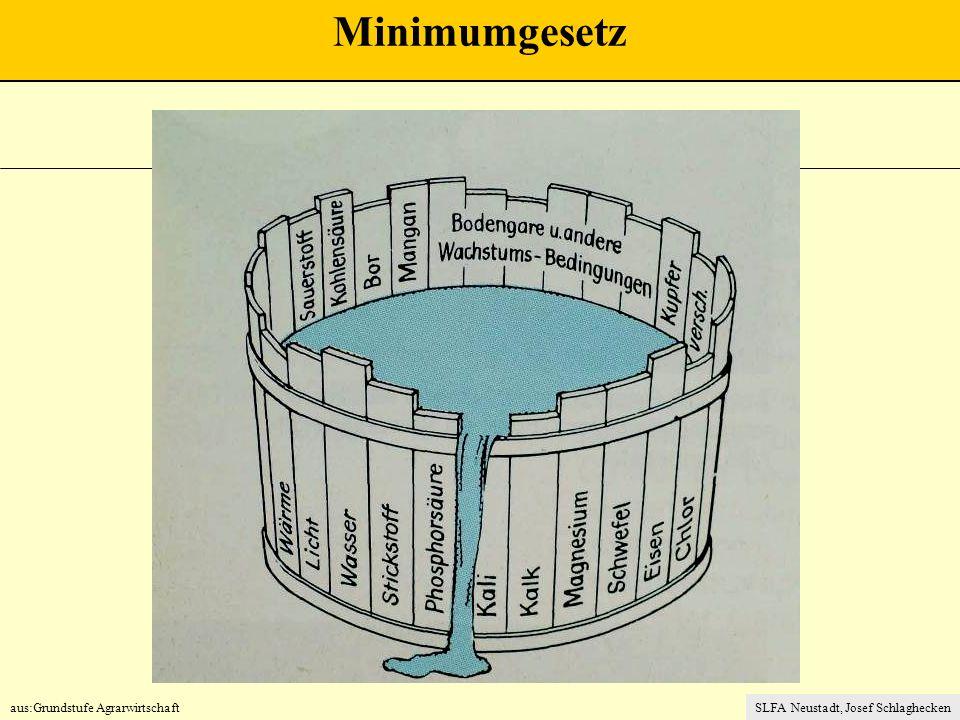 Minimumgesetz aus:Grundstufe Agrarwirtschaft