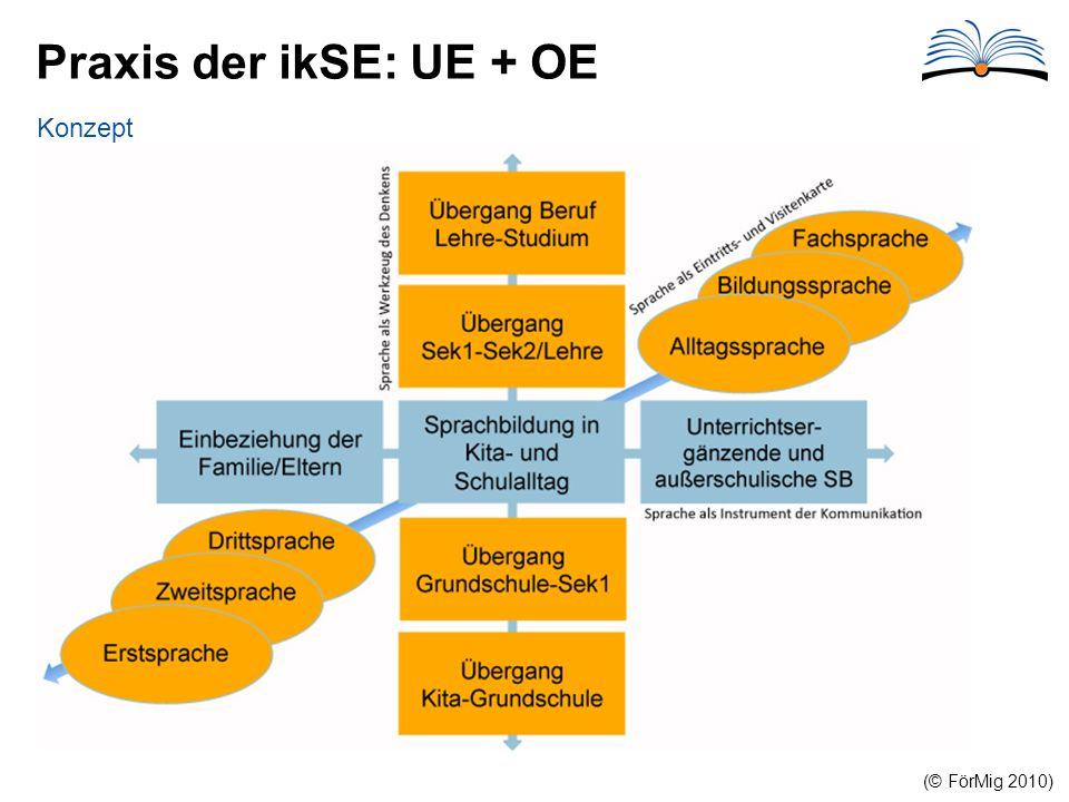 Praxis der ikSE: UE + OE Konzept (© FörMig 2010)