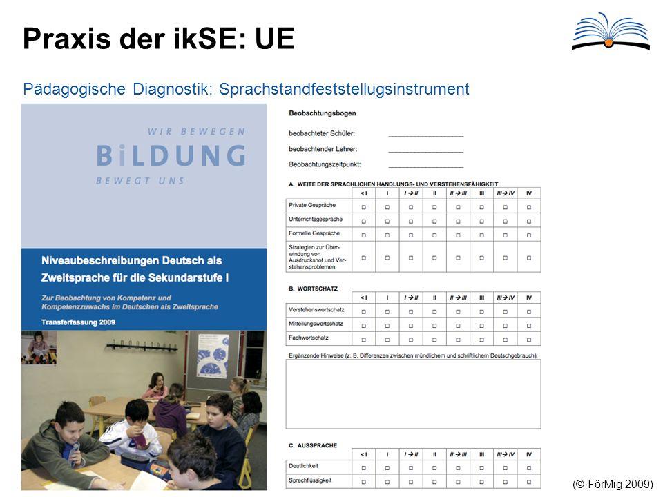 Praxis der ikSE: UE Pädagogische Diagnostik: Sprachstandfeststellugsinstrument (© FörMig 2009)
