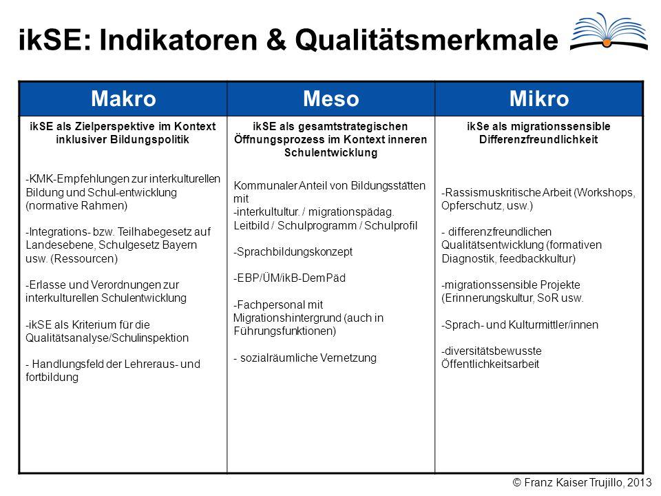 ikSE: Indikatoren & Qualitätsmerkmale