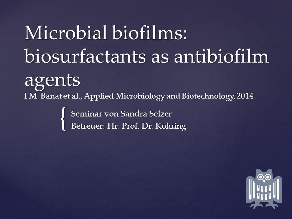 Seminar von Sandra Selzer Betreuer: Hr. Prof. Dr. Kohring