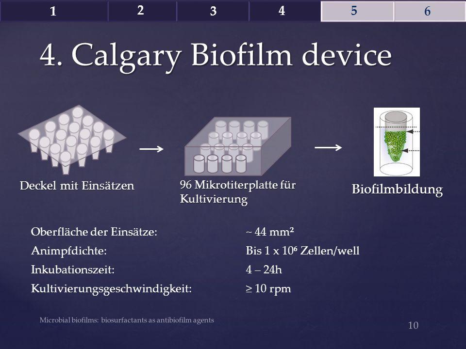 4. Calgary Biofilm device