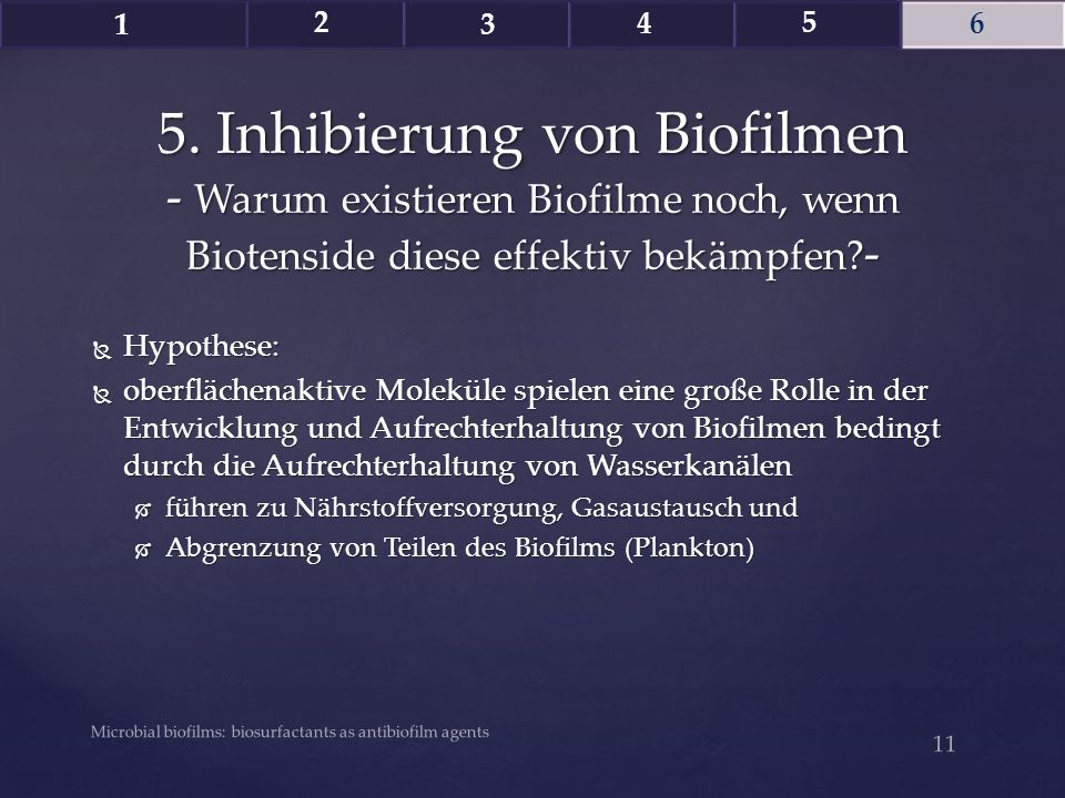 1 2. 3. 4. 5. 6. 5. Inhibierung von Biofilmen - Warum existieren Biofilme noch, wenn Biotenside diese effektiv bekämpfen -