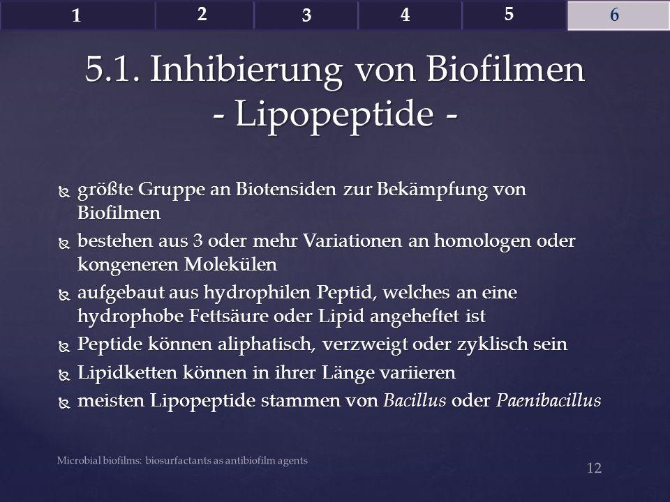 5.1. Inhibierung von Biofilmen - Lipopeptide -