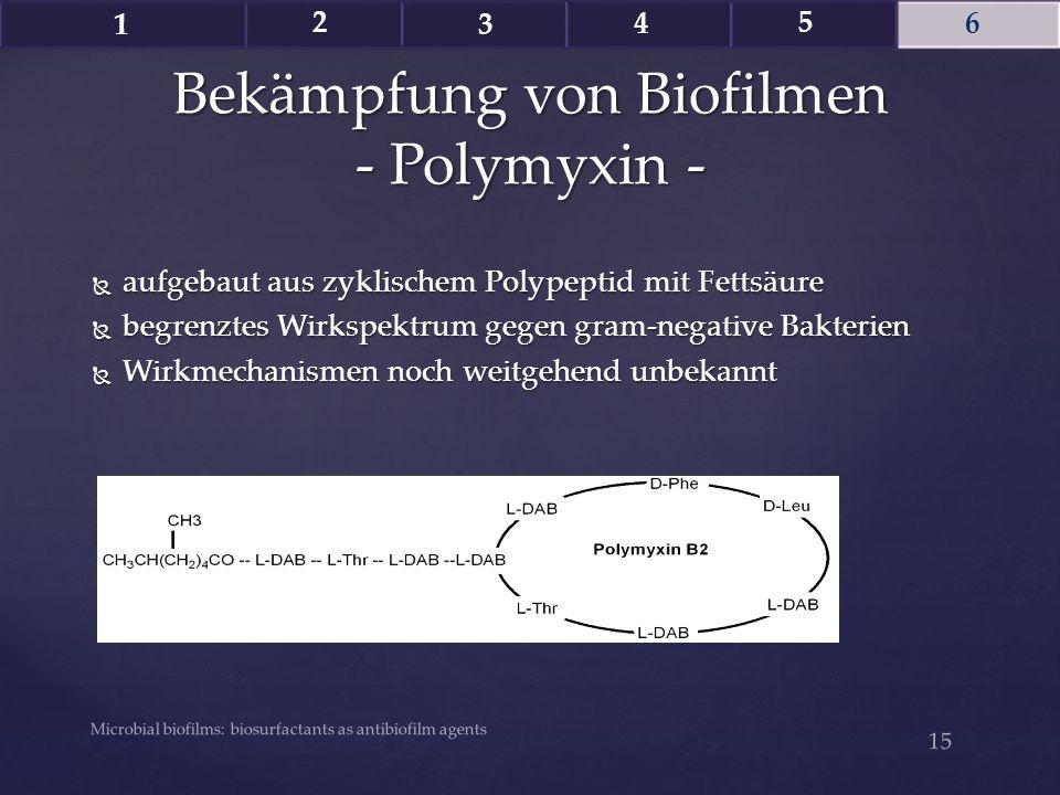 Bekämpfung von Biofilmen - Polymyxin -
