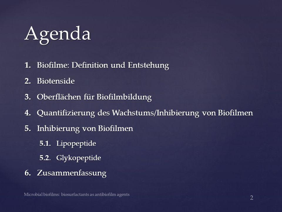 Agenda 1. Biofilme: Definition und Entstehung 2. Biotenside