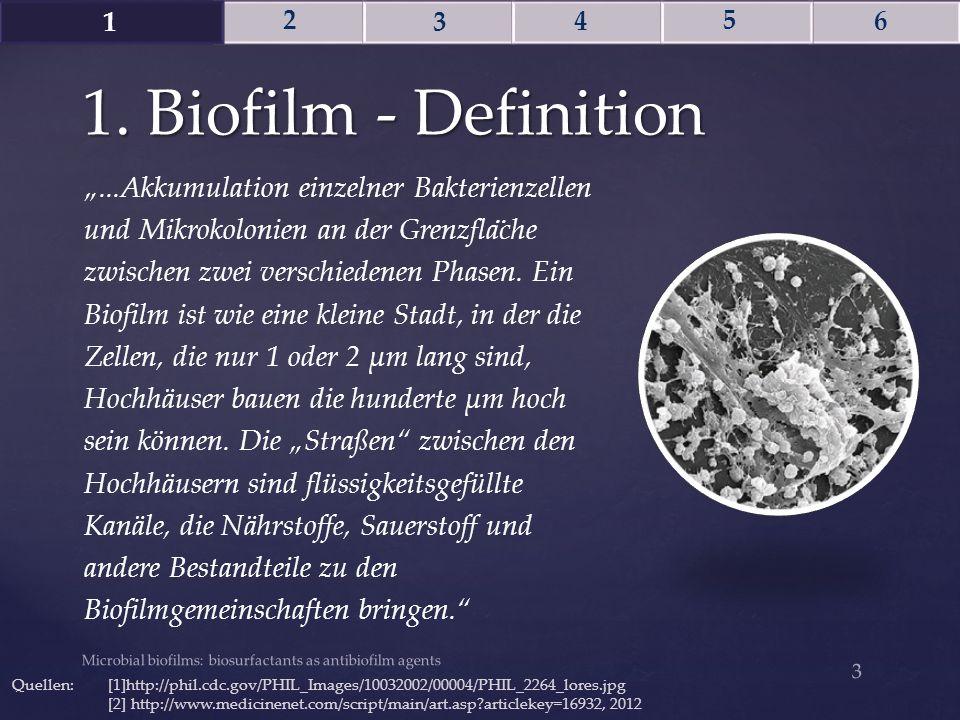 1 2. 3. 4. 5. 6. 1. Biofilm - Definition.