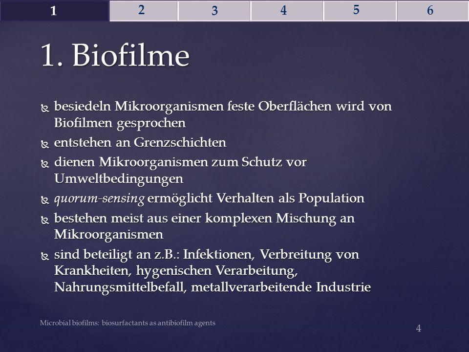 1 2. 3. 4. 5. 6. 1. Biofilme. besiedeln Mikroorganismen feste Oberflächen wird von Biofilmen gesprochen.