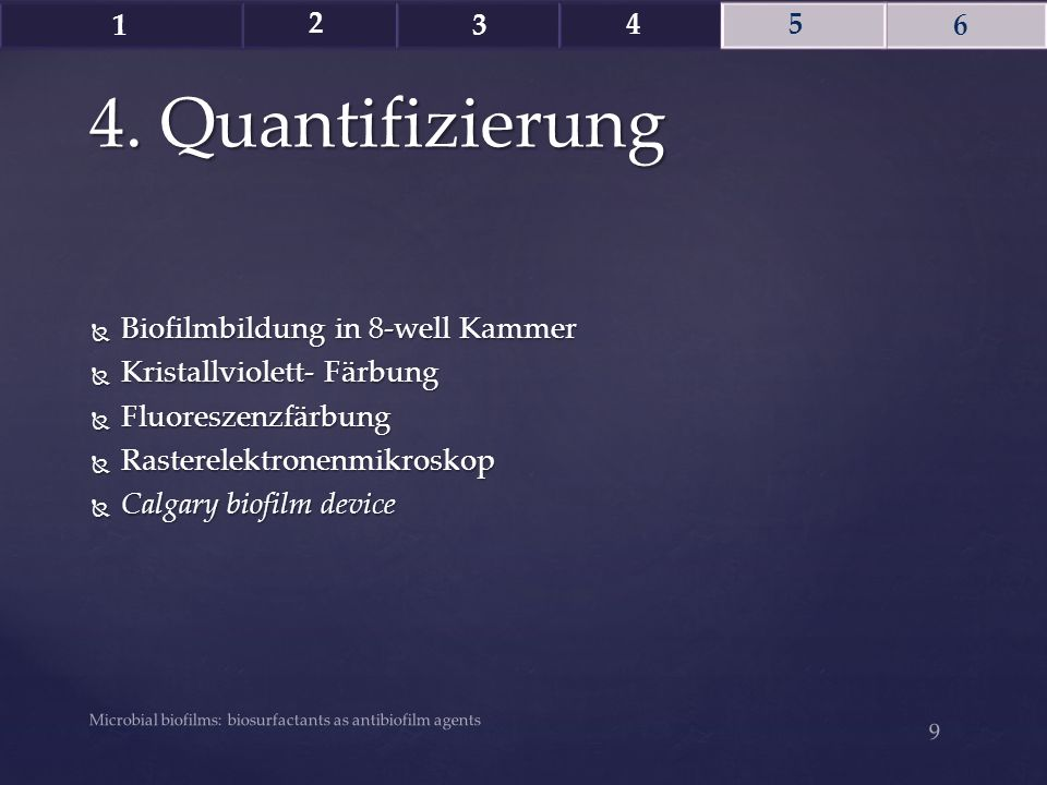 4. Quantifizierung Biofilmbildung in 8-well Kammer
