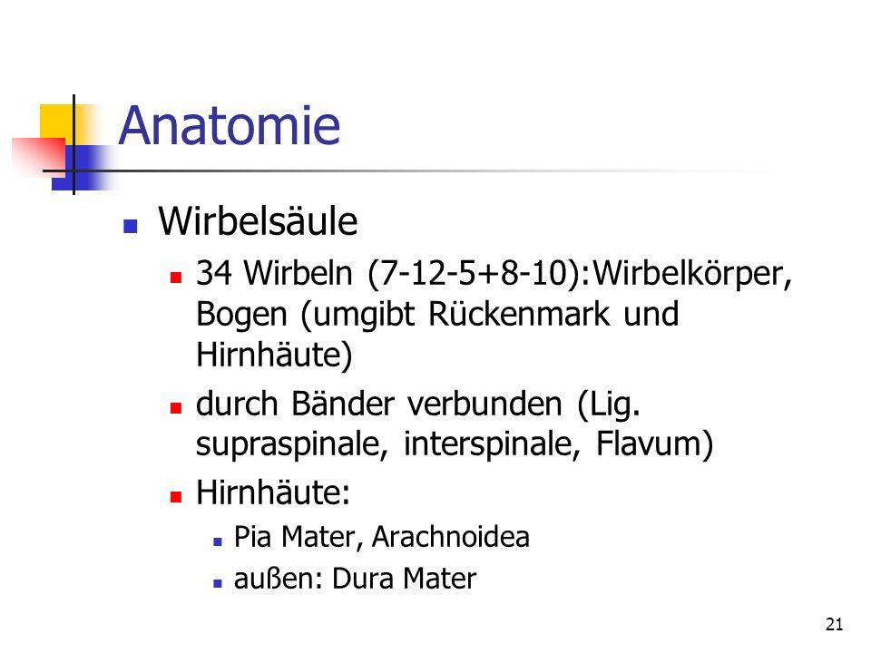 Anatomie Wirbelsäule. 34 Wirbeln (7-12-5+8-10):Wirbelkörper, Bogen (umgibt Rückenmark und Hirnhäute)