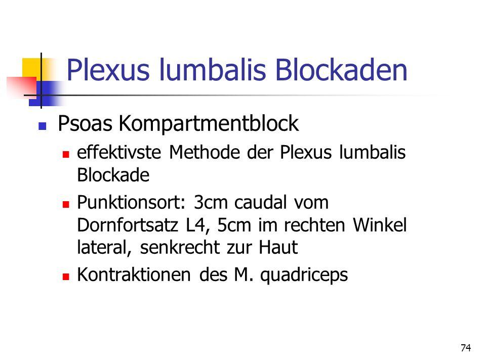 Plexus lumbalis Blockaden