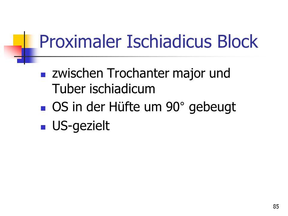 Proximaler Ischiadicus Block
