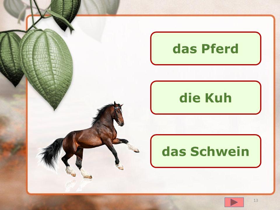 das Pferd die Kuh das Schwein