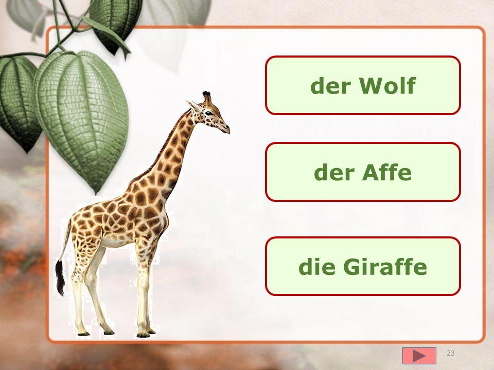 der Wolf der Affe die Giraffe