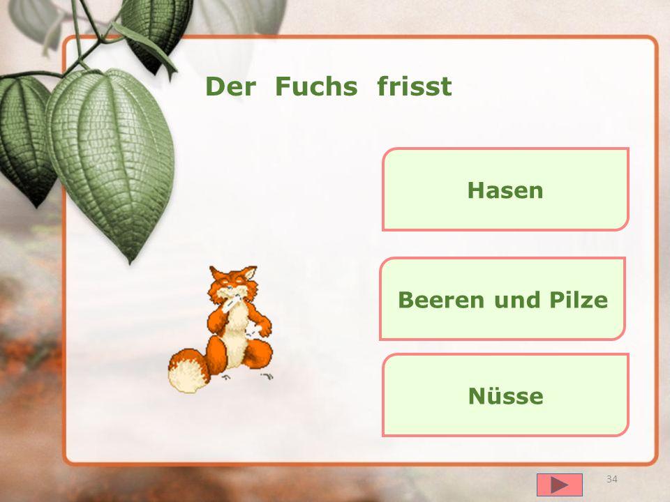 Der Fuchs frisst Hasen Beeren und Pilze Nüsse далее