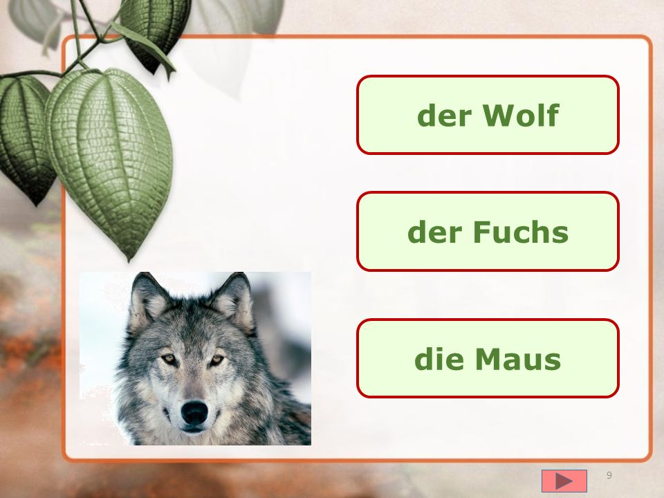 der Wolf der Fuchs die Maus