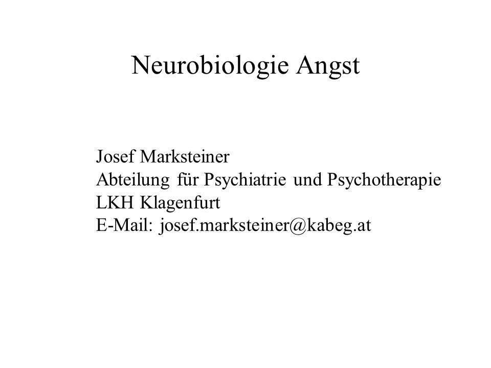 Neurobiologie Angst Josef Marksteiner