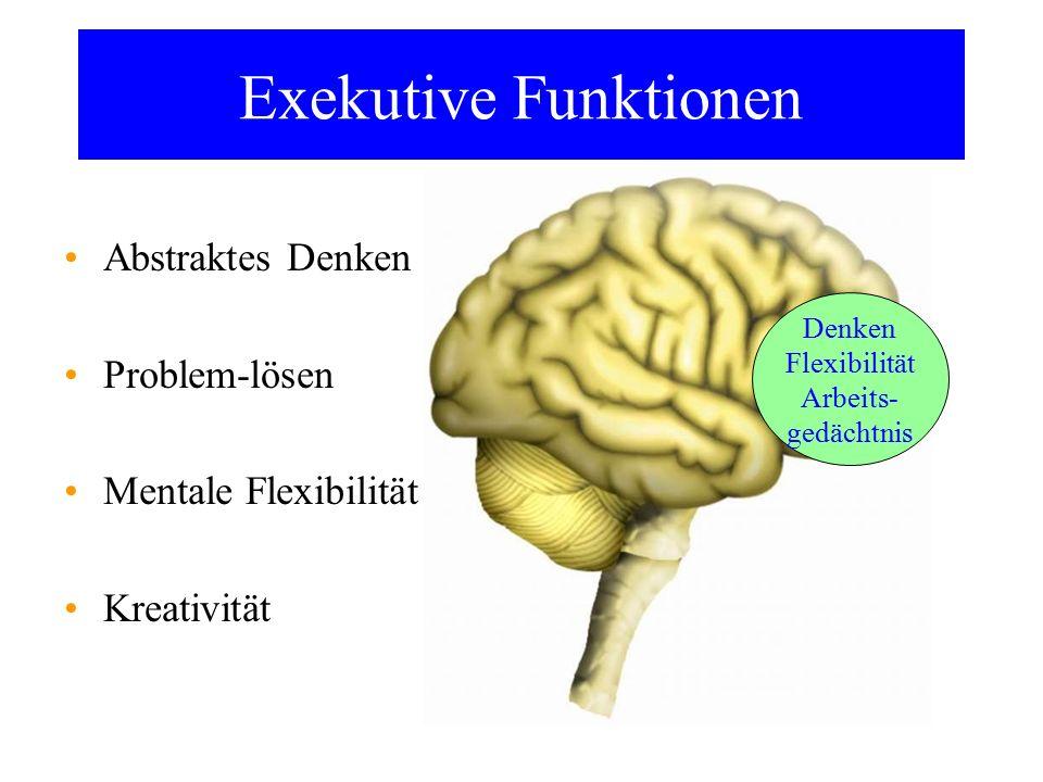 Exekutive Funktionen Abstraktes Denken Problem-lösen