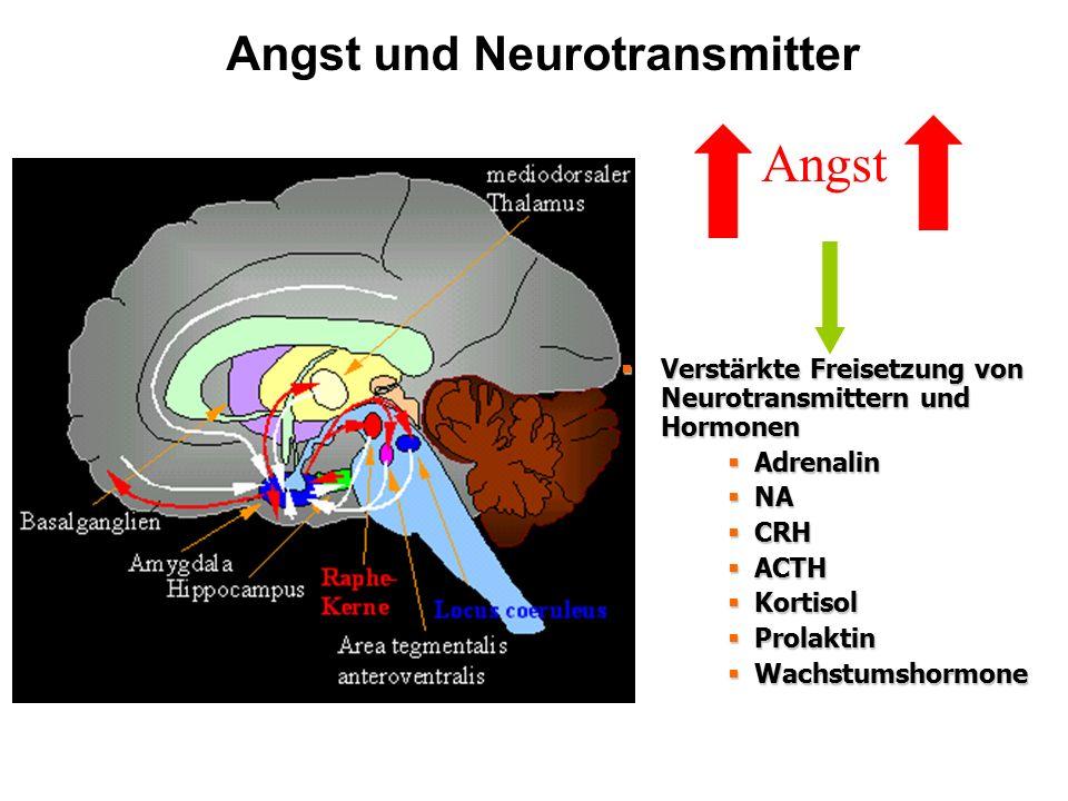 Angst und Neurotransmitter