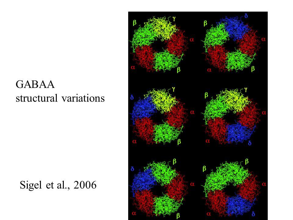 GABAA structural variations Sigel et al., 2006
