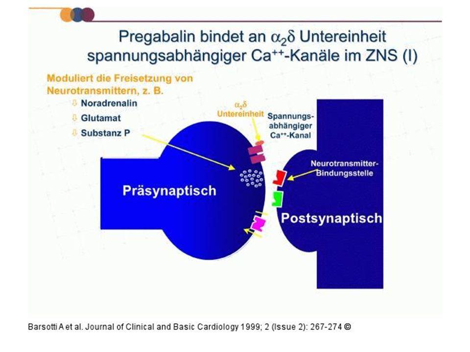 Pregabalin bindet mit hoher Affinität an die alpha-2-delta Untereinheit, einem Protein.
