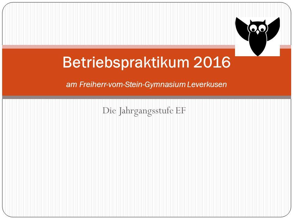 Betriebspraktikum 2016 am Freiherr-vom-Stein-Gymnasium Leverkusen