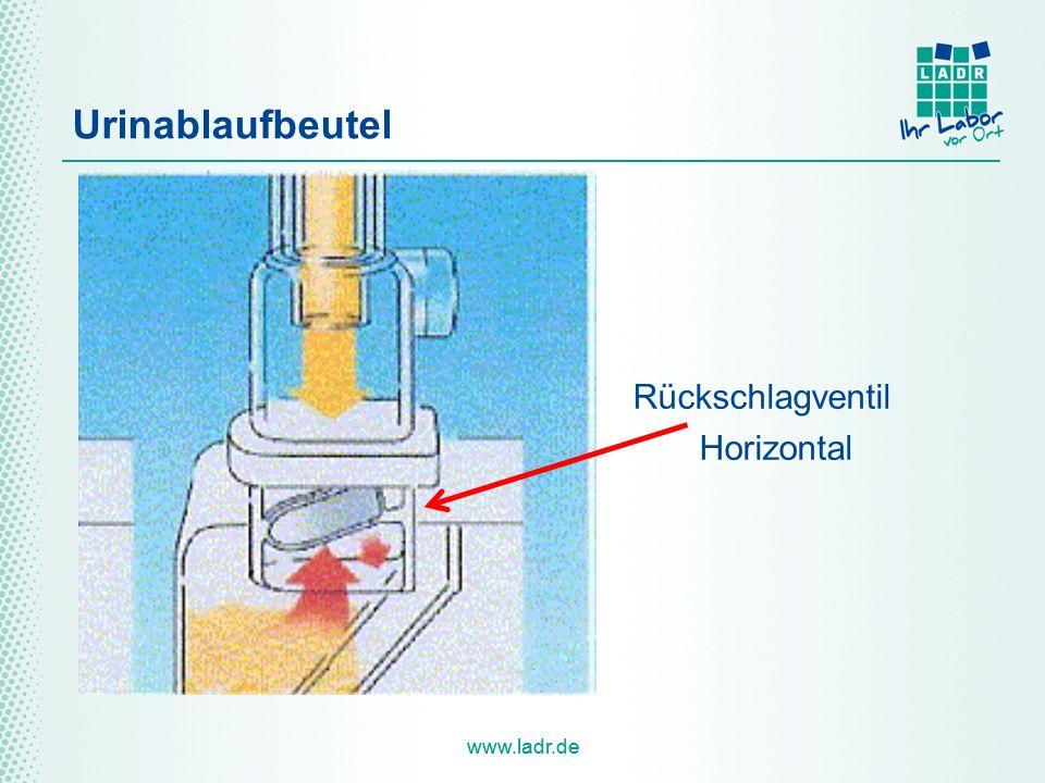 Urinablaufbeutel Rückschlagventil Horizontal