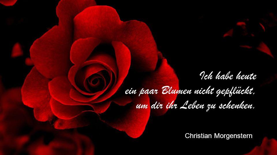 Ich habe heute ein paar Blumen nicht gepflückt, um dir ihr Leben zu schenken. Christian Morgenstern