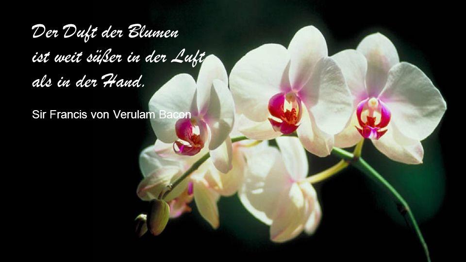 Der Duft der Blumen ist weit süßer in der Luft als in der Hand