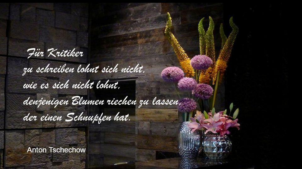 Für Kritiker zu schreiben lohnt sich nicht, wie es sich nicht lohnt, denjenigen Blumen riechen zu lassen, der einen Schnupfen hat.