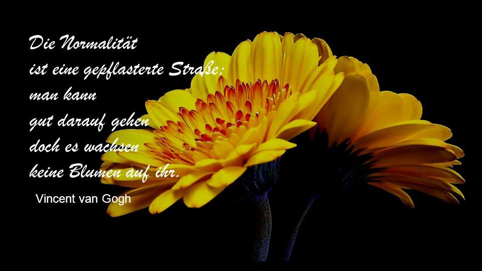 Die Normalität ist eine gepflasterte Straße; man kann gut darauf gehen doch es wachsen keine Blumen auf ihr.