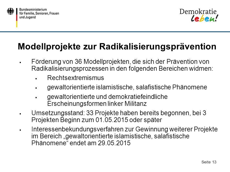 Modellprojekte zur Radikalisierungsprävention