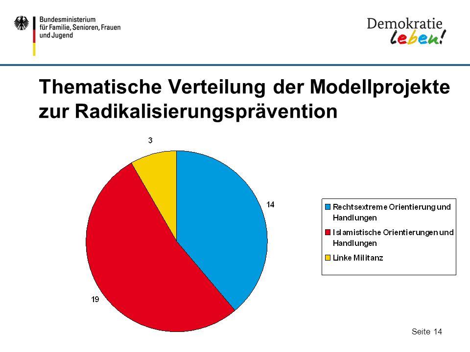 Thematische Verteilung der Modellprojekte zur Radikalisierungsprävention