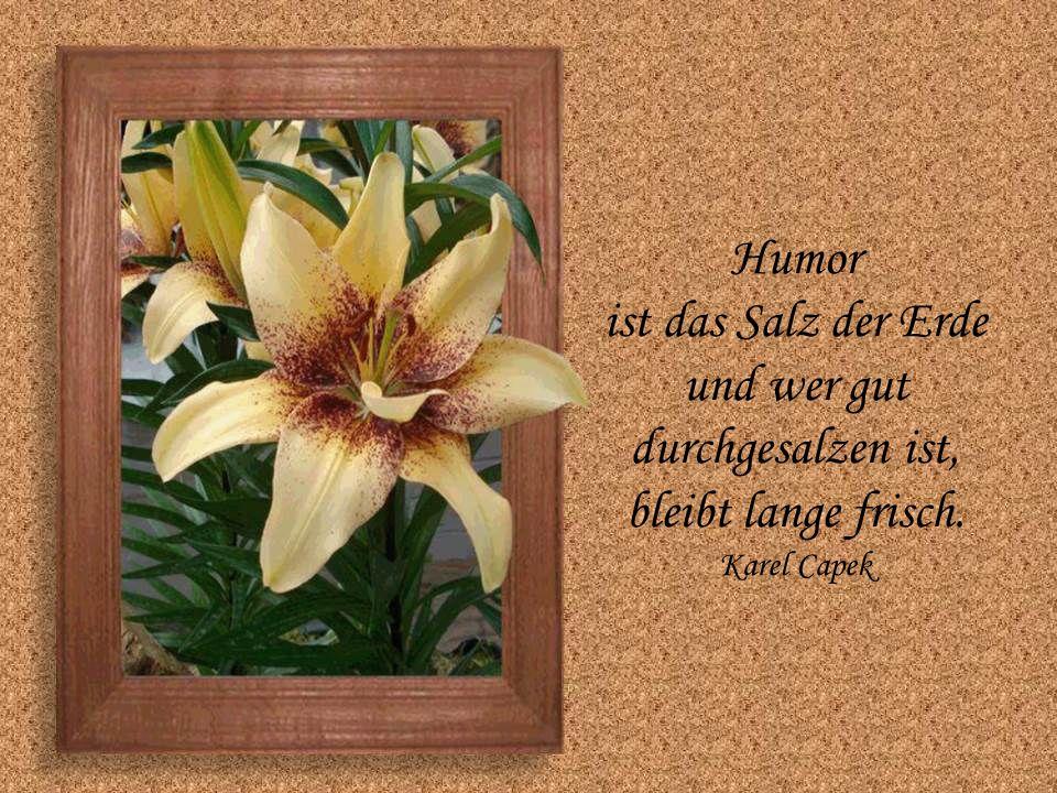 Humor ist das Salz der Erde und wer gut durchgesalzen ist,