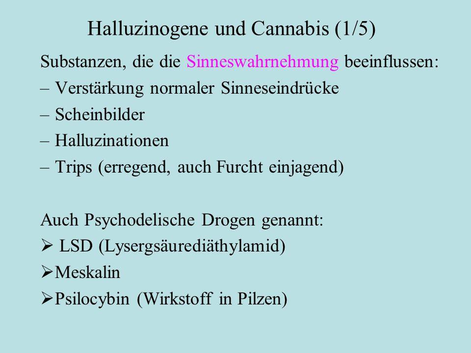 Halluzinogene und Cannabis (1/5)