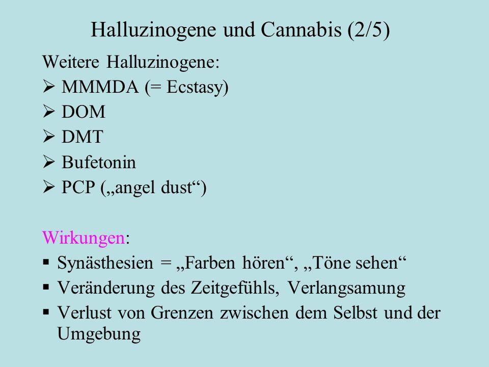 Halluzinogene und Cannabis (2/5)
