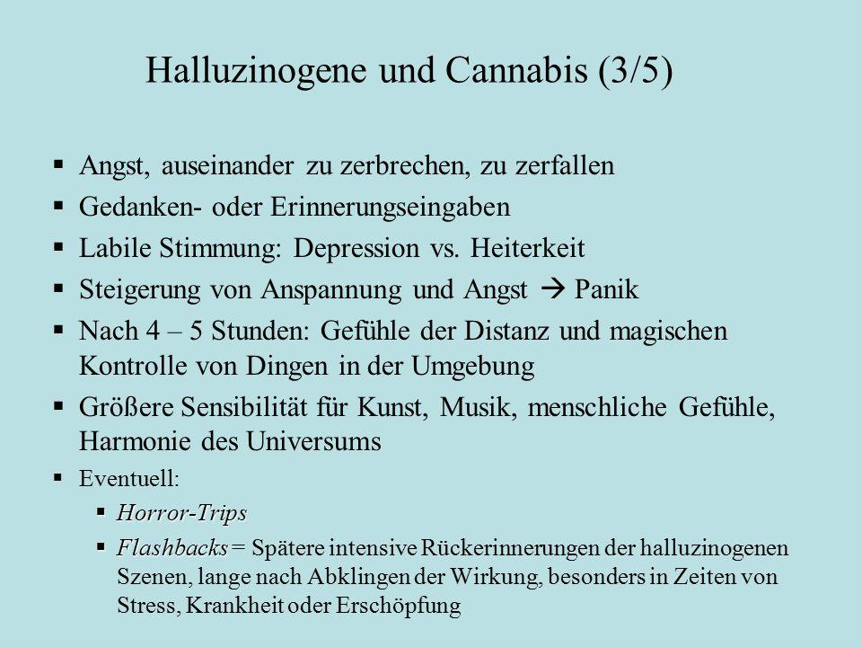 Halluzinogene und Cannabis (3/5)