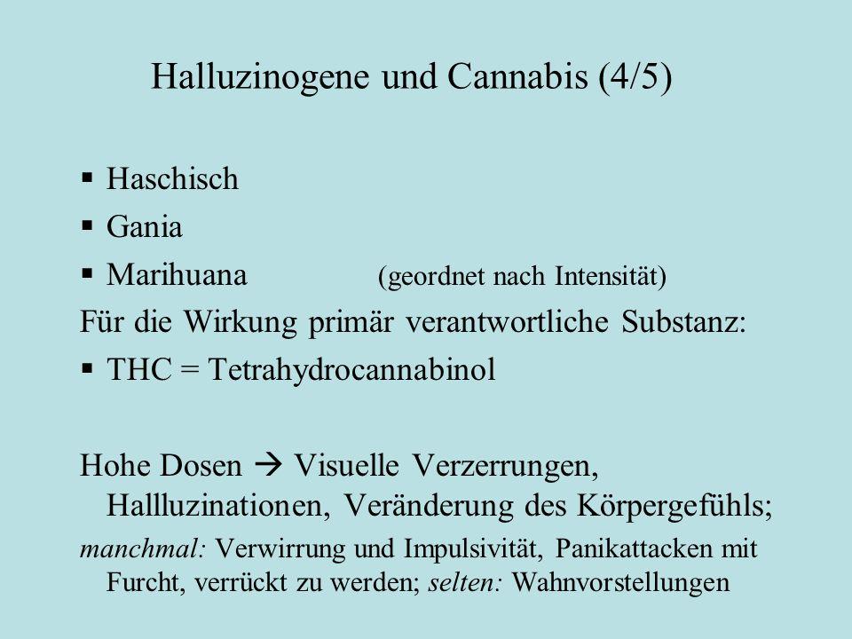 Halluzinogene und Cannabis (4/5)