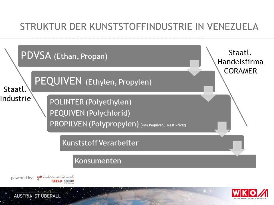 Struktur der Kunststoffindustrie in Venezuela
