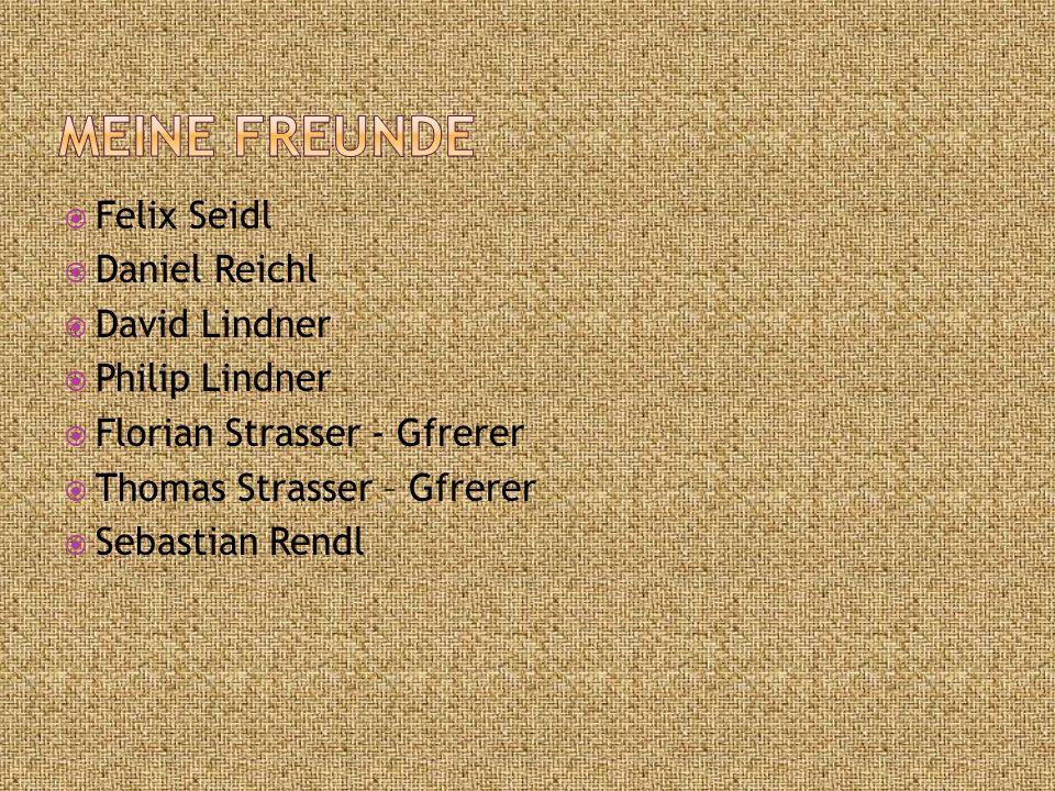 Meine Freunde Felix Seidl Daniel Reichl David Lindner Philip Lindner