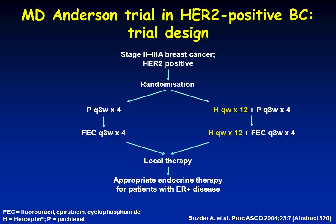 MD Anderson trial in HER2-positive BC: trial design