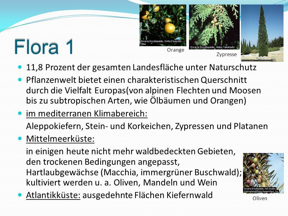 Flora 1 11,8 Prozent der gesamten Landesfläche unter Naturschutz