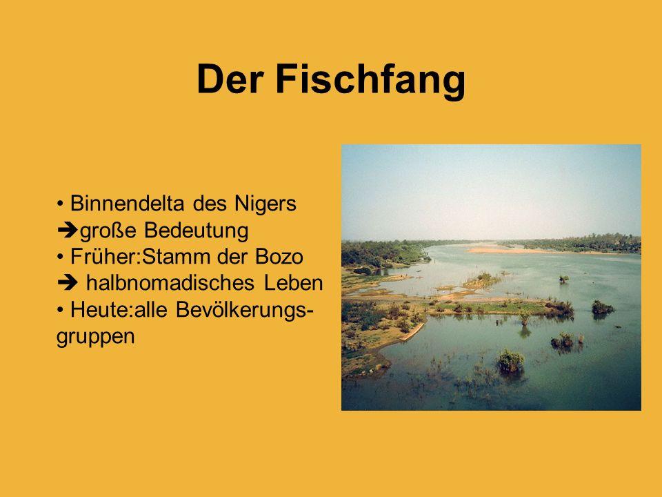 Der Fischfang Binnendelta des Nigers große Bedeutung