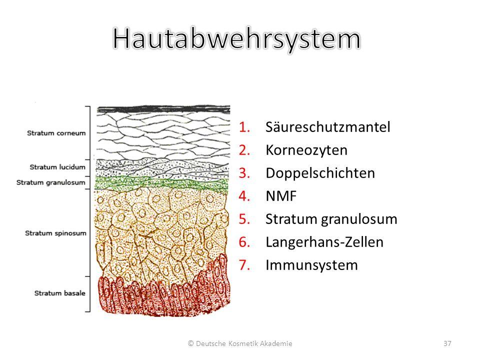 pH-Wert des Säureschutzmantels der Haut