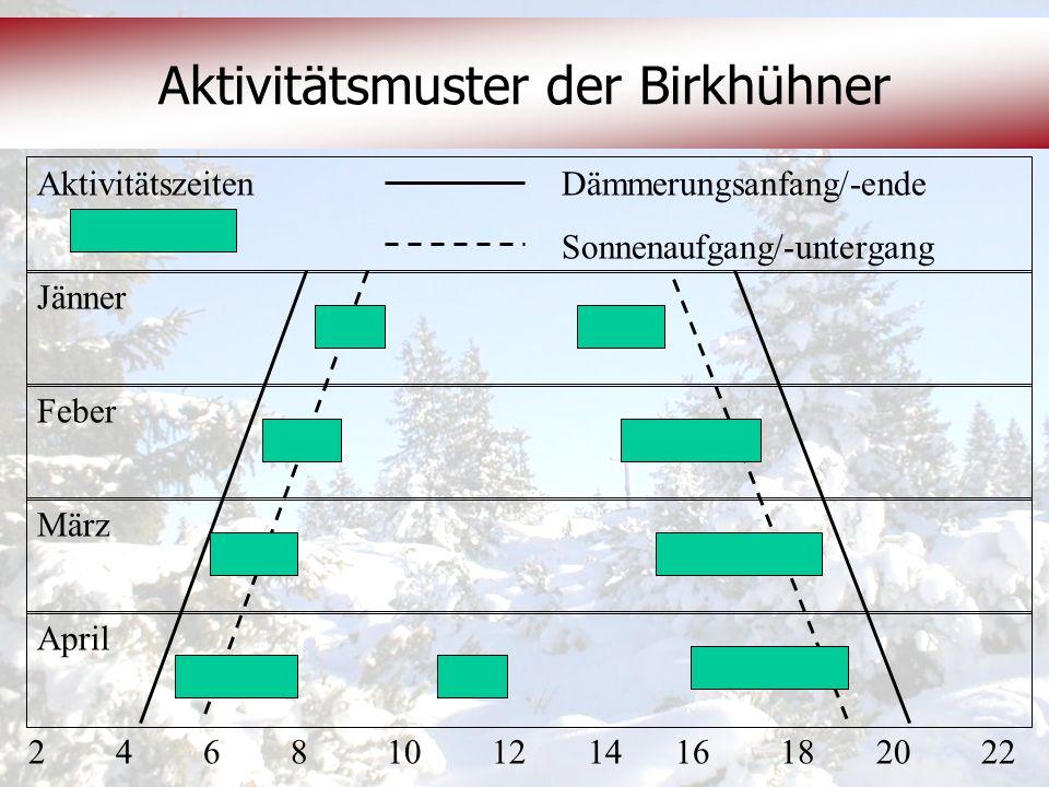 Aktivitätsmuster der Birkhühner