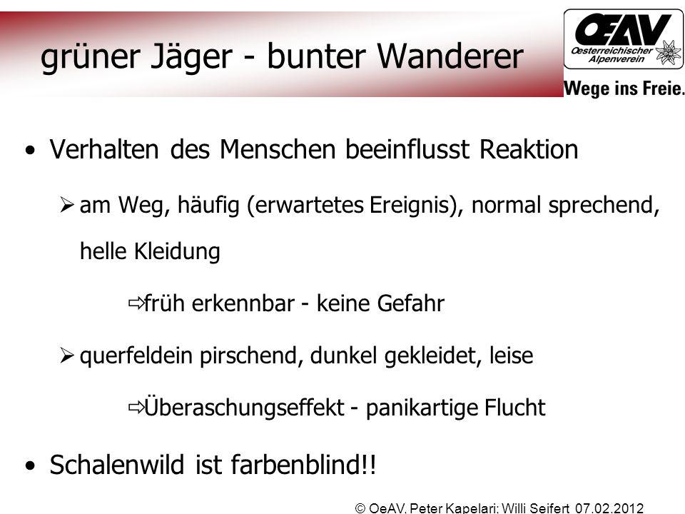 grüner Jäger - bunter Wanderer