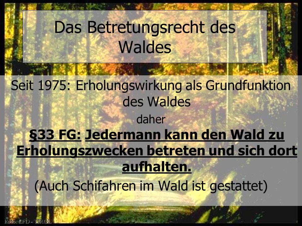 Das Betretungsrecht des Waldes